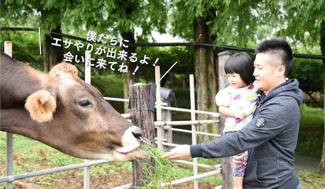 平田観光農園 動物広場