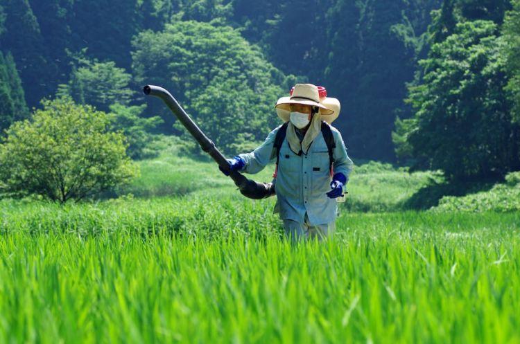 肥料散布(施肥)の効率的なやり方と施肥量の計算方法について