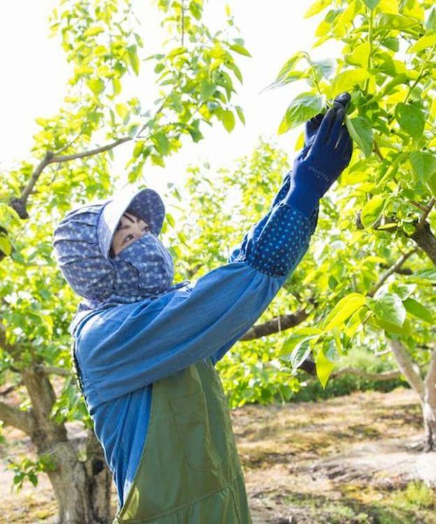みかん農家の声からうまれた「ウレタンコーティング背抜き袖付き手袋」