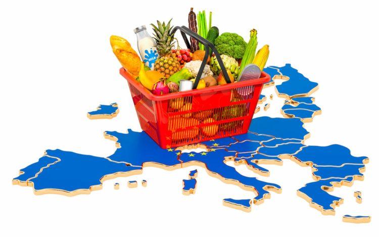 ヨーロッパ農業の現状と課題~比較して見えた日本農業との違い~