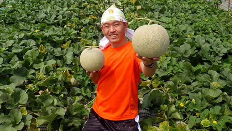 ダイレクトマーケティングで年商1.4億円を実現した富良野のメロン農家【前編】直売と通販で年商23倍へ
