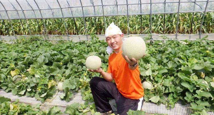 ダイレクトマーケティングで年商1.4億円を実現した富良野のメロン農家【後編】飛躍の秘訣は経営者の成長