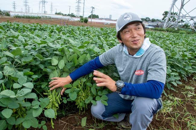 西船橋ひらの農園 平野徹さん 枝豆栽培は全面的に任されている