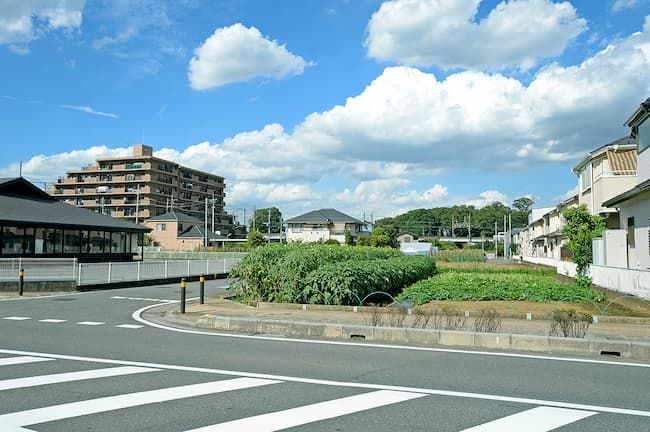 廣谷農園は埼玉県新座市の住宅街の中に広がる