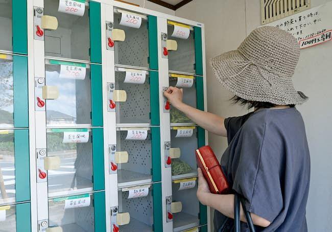 新座市 廣谷農園 ロッカー型販売所で野菜を購入しているお客様