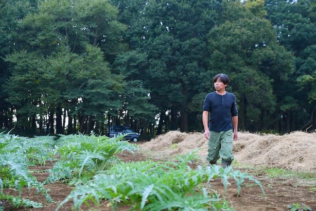 タケイファーム 植え替えたばかりのアーティチョーク畑を見回る武井敏信さん