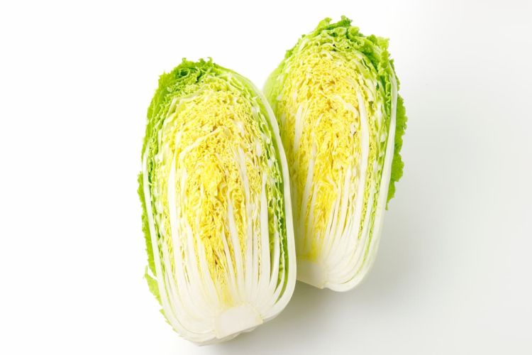 白菜の葉が巻かないのはなぜ?栽培方法の基本とよくある失敗原因