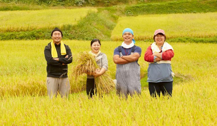 新規就農するために。超えるべきハードルや必要なものとは?