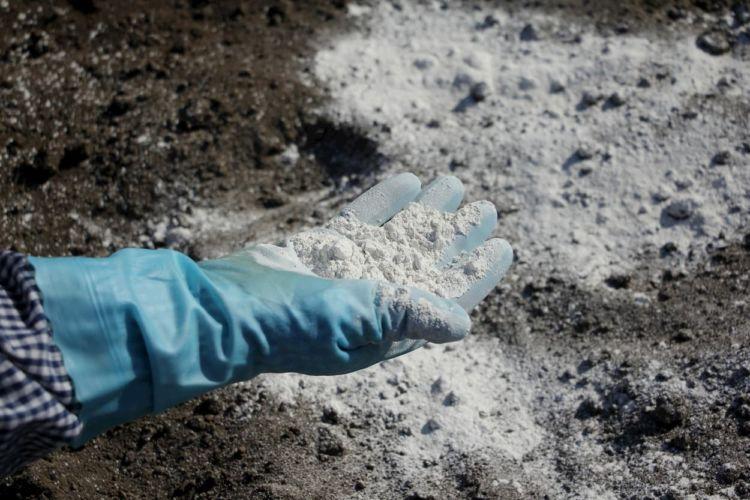 畑(ほ場)の土作り・土壌改良における石灰の使い方とは?種類や注意点なども紹介