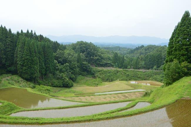 美しい棚田は日本人と米のつながりや食料自給率をイメージさせる