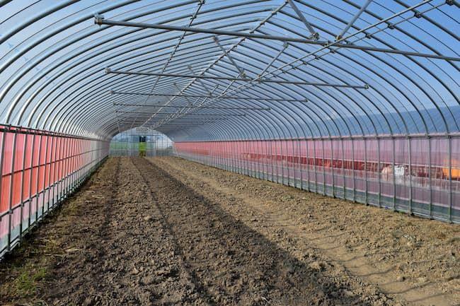 新設された農業用ハウス