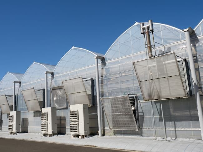 太陽光型植物工場の外観