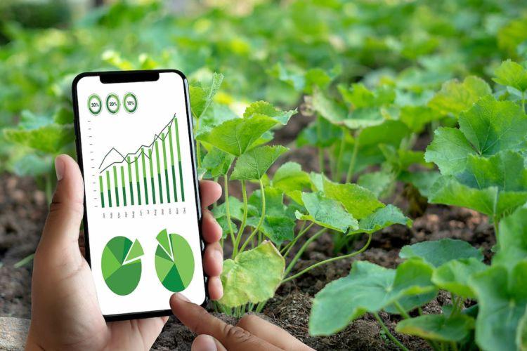 大規模農家の経営効率化を実現!農林水産省が推進する「スマート農業」とは?