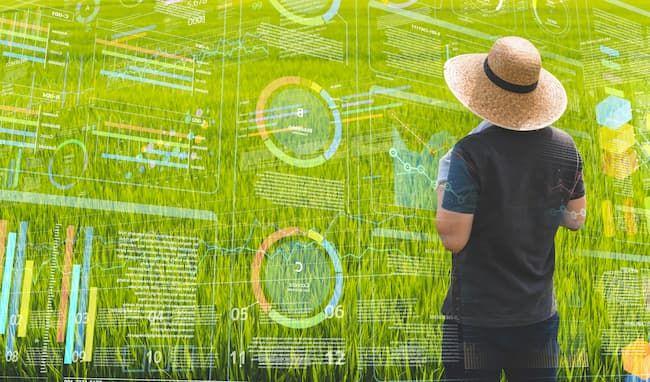 農業 AI イメージ