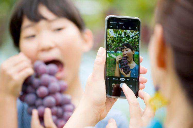 農家がSNS・ブログで集客するには? 収益化をめざす取り組み事例