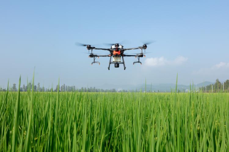ドローンで農薬散布を効率化! DJIのおすすめ農業用ドローンと活用事例