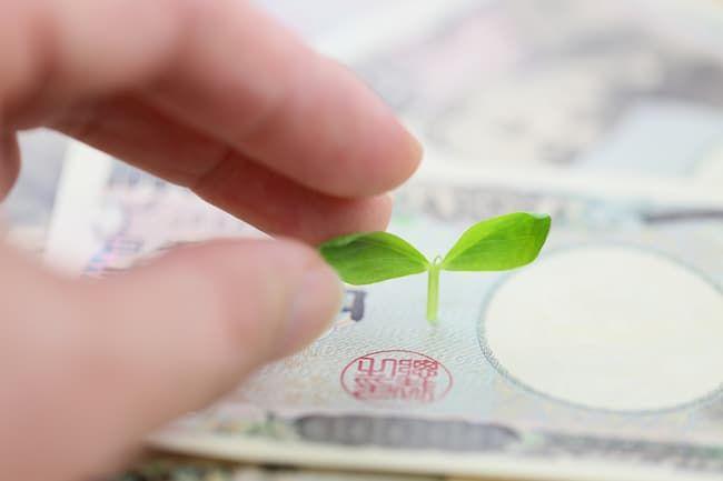 農業 出資