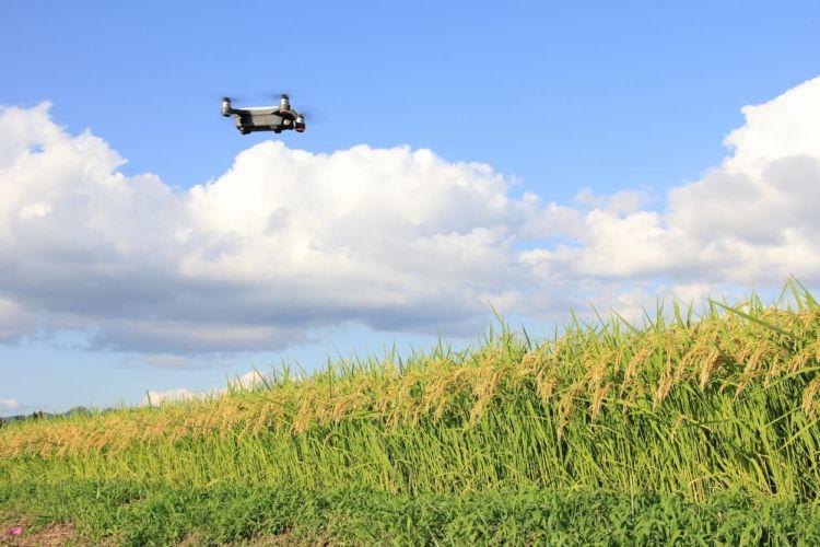 農業用ドローンとは?メリット・デメリットや価格についても解説