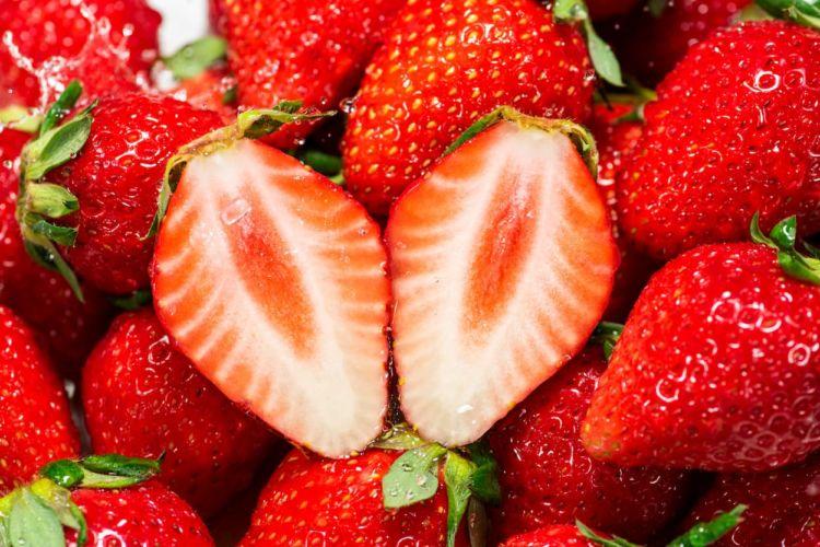 【イチゴの促成栽培】出荷時期の調整で売上アップ