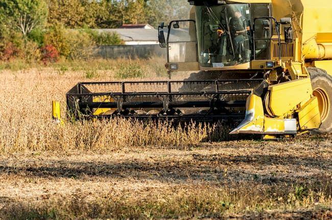 コンバイン 大豆収穫
