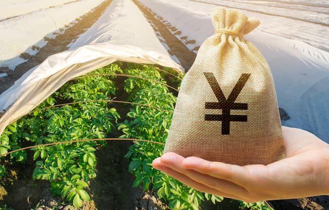 農業 資金