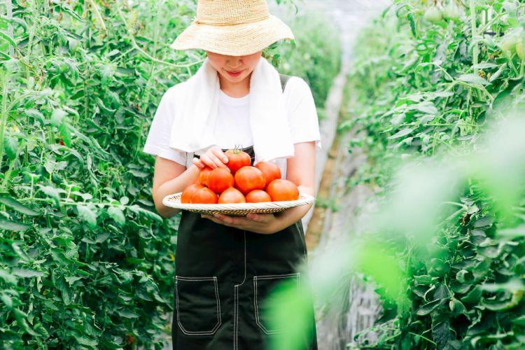 農家のための特別なデニムのつなぎ! コーデをたのしめる作業着ブランドも紹介