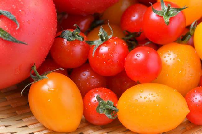 みずみずしいトマトとミニトマト
