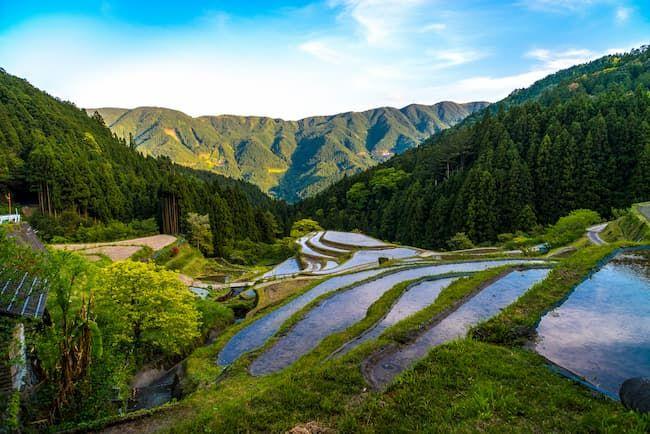 徳島県上勝町の美しい棚田