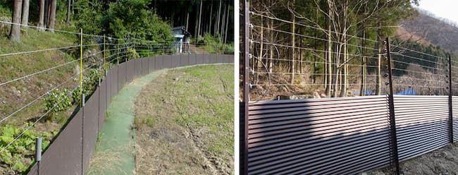 トタン板と電気柵を組み合わせた防除対策の設置例