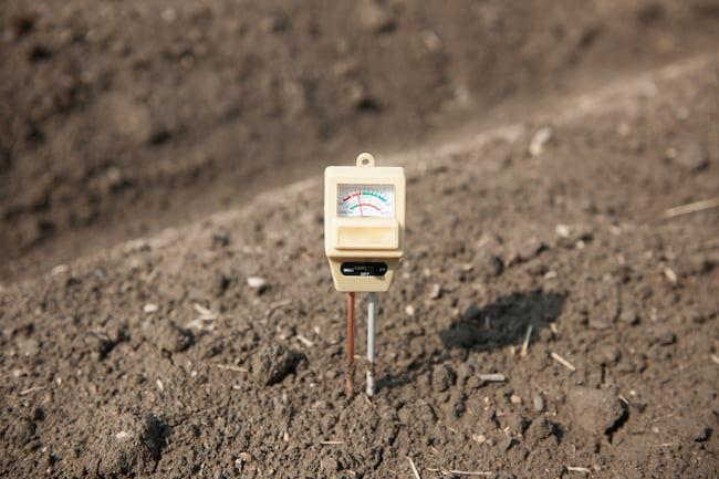 土壌酸度(pH値)の測定