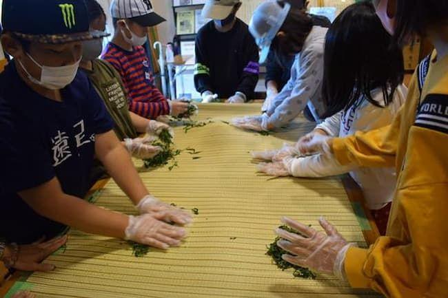 小学校の社会科見学:釜炒りの製法と手もみの体験&お茶の淹れ方レッスン