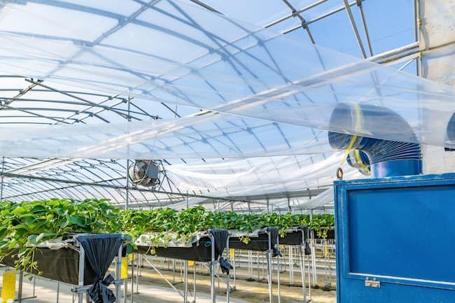 複合環境制御装置を導入した施設園芸