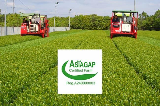 深緑茶房はJGAP認証・ASIAGAP認証を取得している