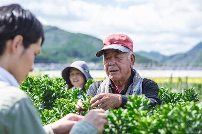 農家の高齢化