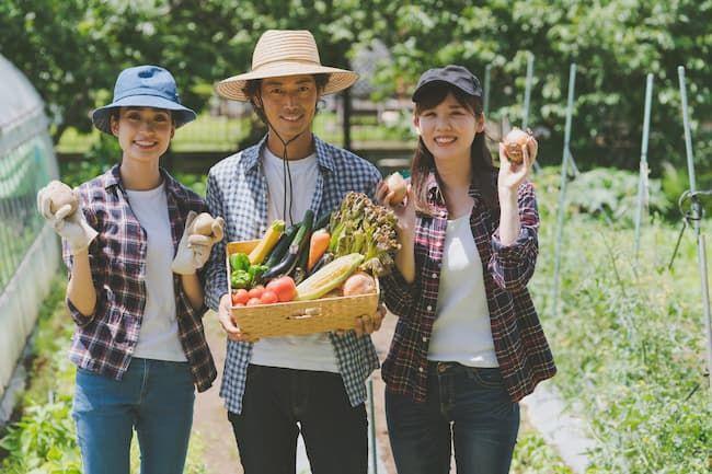 農家のアルバイト