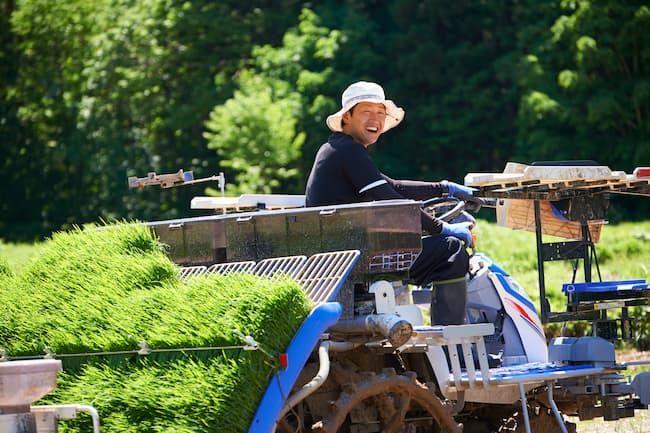 ハットタイプの帽子で田植え機を運転する男性