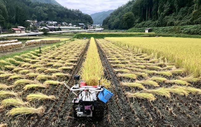 バインダー付き稲刈り機