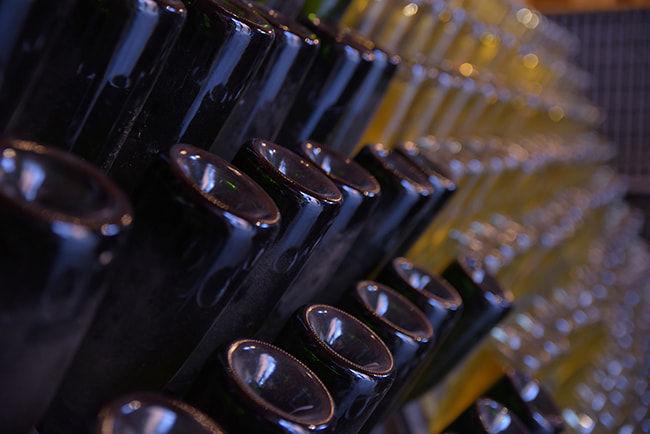 ブドウ栽培スケジュールの変更に合わせて醸造のスケジュールも変わる