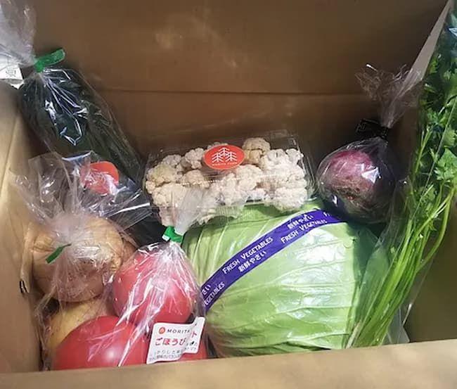 森田農園で販売している野菜セット