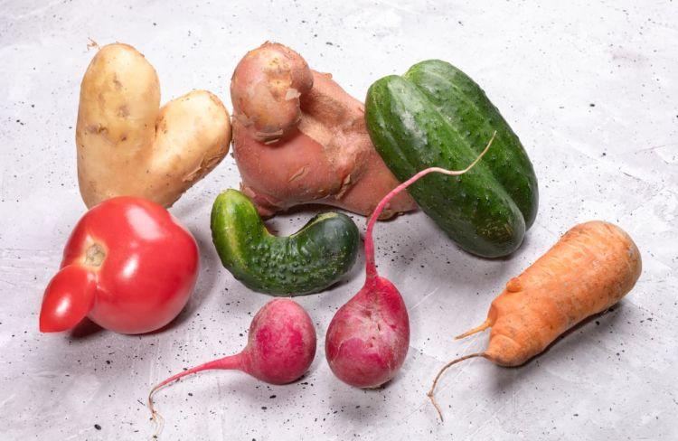 規格外野菜の販売で廃棄量を削減! 現代農家が収入を増やすためのアイデア
