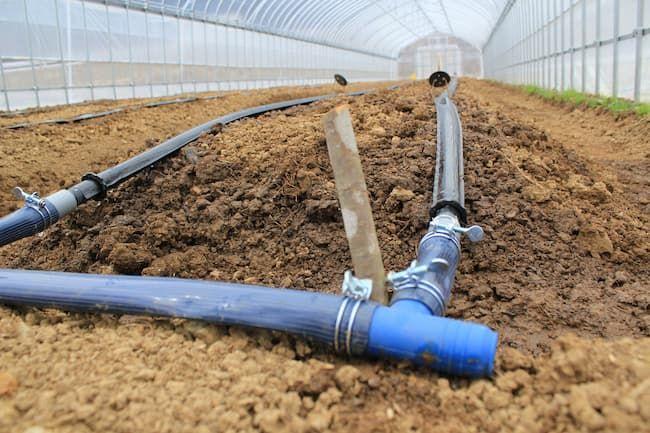ハウス栽培 点滴ホースの設置