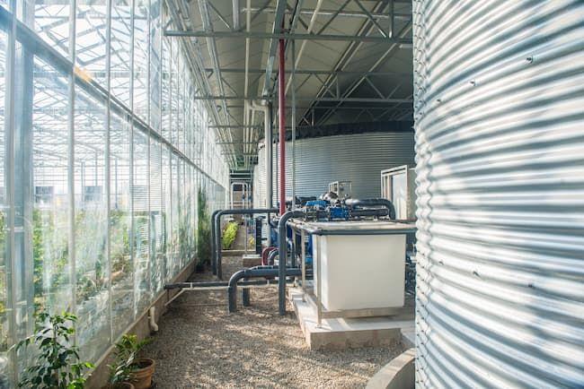 ハウス栽培 灌水システム