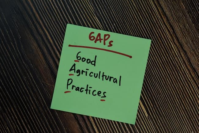 GAPの意味 Good Agricultural Practices