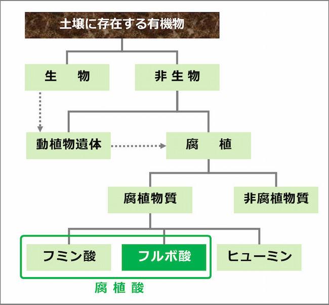 土壌中の有機物の分類と腐植酸(フルボ酸とフミン酸)の位置づけ