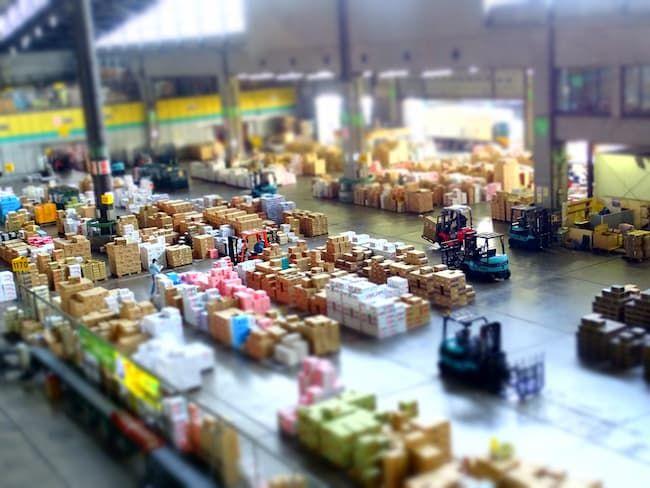いろいろな作物が集まる大田市場