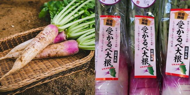 オリジナル野菜の苅部大根。受験期の冬は「受かるべ大根」として出荷