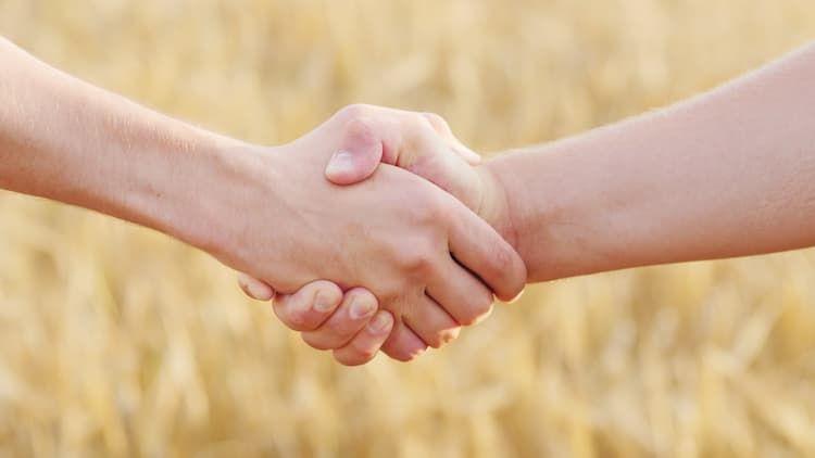 農福連携とは? 農家が取り組むメリットと、障害者雇用の成功事例