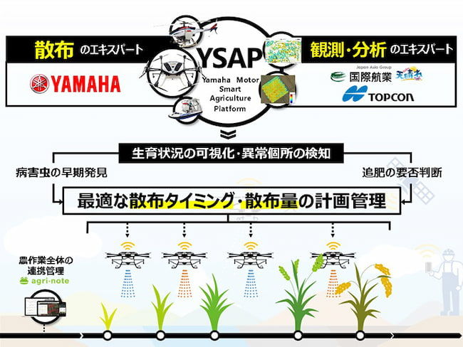 「YSAP」の概要