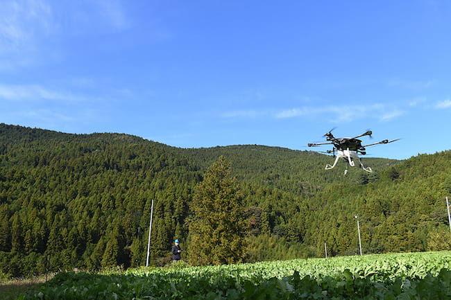 浜松市の「中山間地スモールスマート農業実証プロジェクト」が実施されている山間地の耕作放棄地を再生した大根のほ場と「YMR-08」