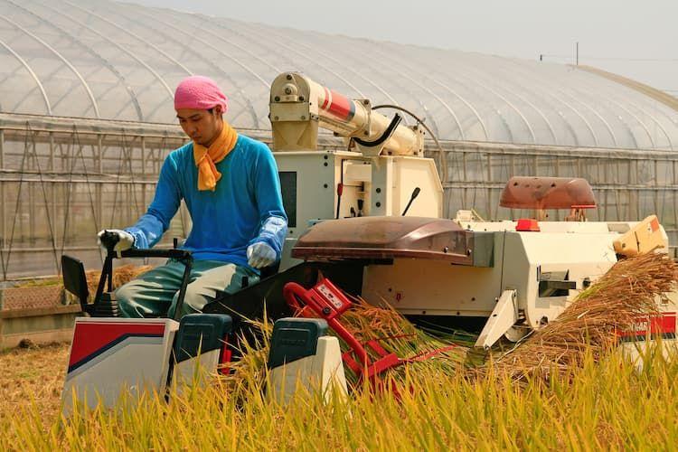 認定就農者になるには? デメリットはある? 新規就農時に使える制度を解説